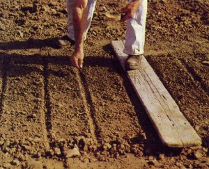 Подготовка почвы к посеву и посадке
