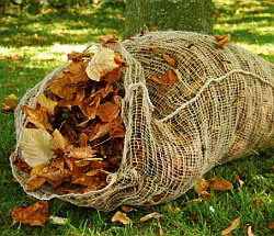 Leafmould_sack