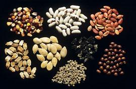semena2-2