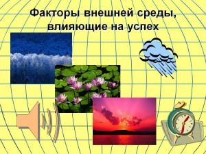 0012-012-Faktory-vneshnej-sredy-vlijajuschie-na-uspekh