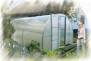 greenhouse-4